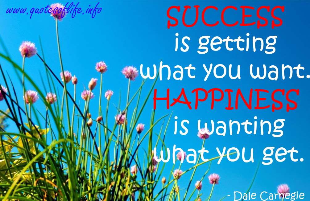 Happiness Quote About Success As
