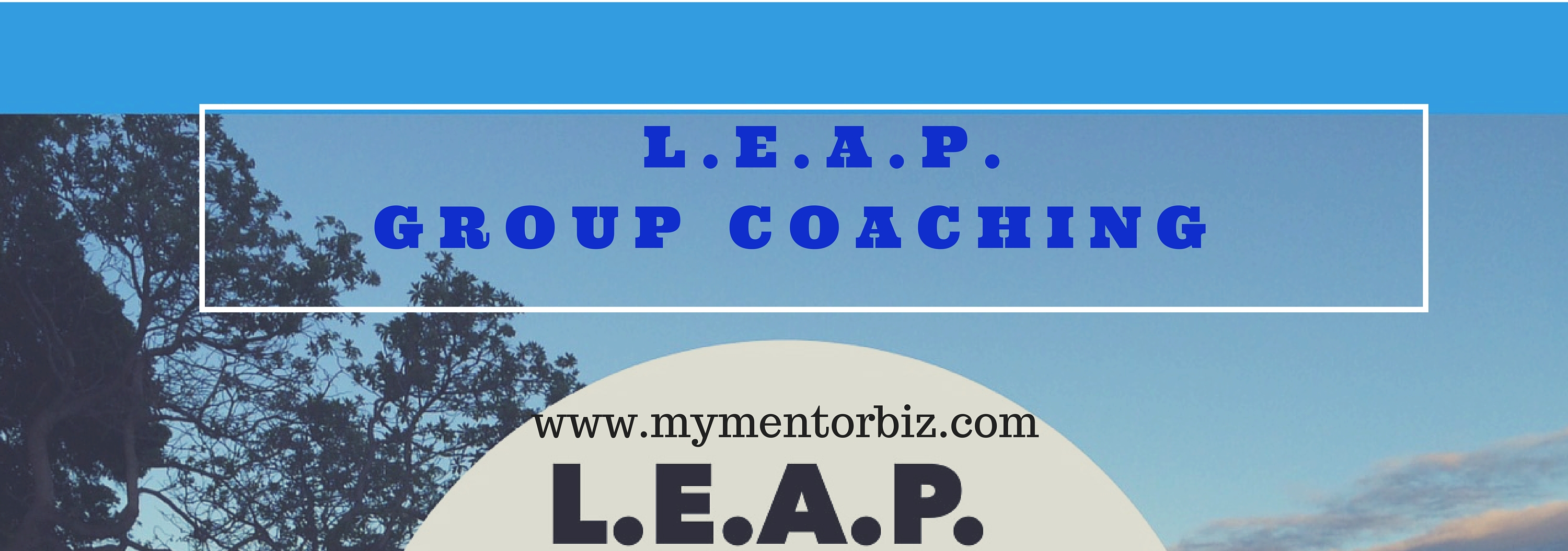 leap sales page header